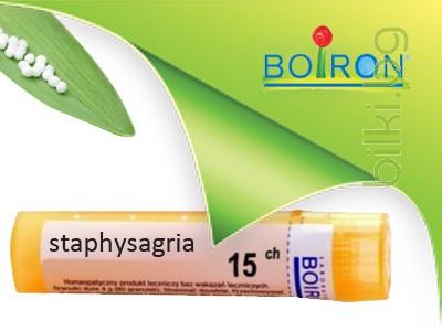 staphysagria, boiron