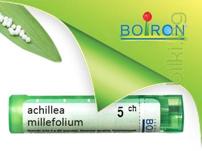 achillea millefolium, boiron