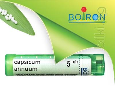 capsicum annuum,boiron
