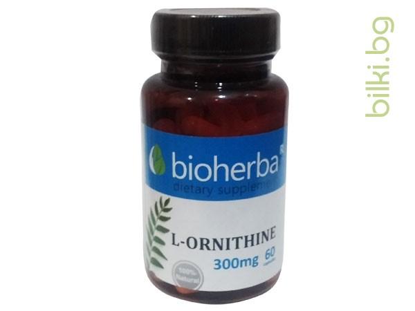 л-орнитин, биохерба, растежен хормон, метаболизъм