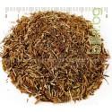 ОЧАНКА , стрък , Euphrasia officinalis , Радост за очите
