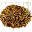 ШЛЕМНИК БАЙКАЛСКИ , СТРЪК РЯЗАН , Scutellaria baicalensis