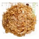 БОБОВИ ШУШУЛКИ , ФАСУЛ , Phaseolus vulgaris L.