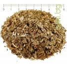 Бяла върба , лист , Salix alba L.