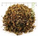 АГРИМОНИЯ , КАМШИК СТРЪК , Agrimonia eupatoria L.