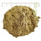 Червена детелина на прах, Люцерна на прах , Trifolium pratense