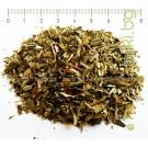 Облепиха, зърнастец лист, Hippophae