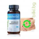STOMACH ESSENTIALS 60  CAPSULES / ФОРМУЛА ЗА СТОМАХА 60 КАПСУЛИ , Биохерба