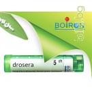 Дросера, DROSERA CH 5, Боарон