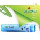 Кантарис, CANTHARIS CH 9, Боарон