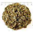 ПОДБЕЛ ЛИСТ , Tussilago farfara L., leaf