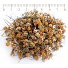 ЛАЙКА ЦВЯТ И СТРЪК , Matricaria chamomilla L. , БИЛКОВ ЧАЙ НАСИПЕН