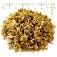 софора, японска акация, билка при хемороиди,