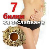 билки за отслабване, Чай 7 билки за отслабване, чай за отслабване мнения, чай за отслабване цена