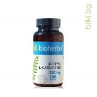 ацетил l-карнитин, l-карнитин, l-carnitine