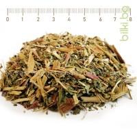 иван чай, копорски чай, теснолистна върбовка