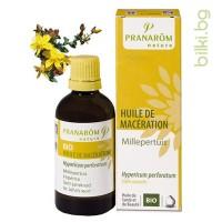 пранаром, жълт кантарион био, био масло