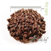 какаови зърна билка