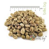 зелено кафе на зърна, сурово кафе, робуста