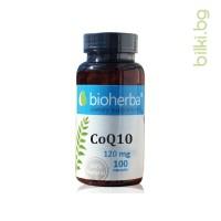 coq10, убихинон, аденозин трифосфат