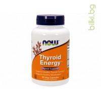 Thyroid Energy,формула за щитовидната жлеза,now foods