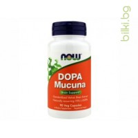 dopa mucuna,кавча,now foods,подържане на настроението