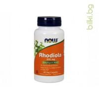 rhodiola,златен корен,now foods,адаптогенна билка