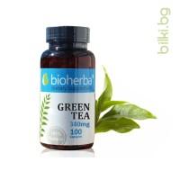 зелен чай, биохерба, зелен чай за отслабване, зелен чай цена