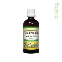 чаено дърво, масло, антибактериалн