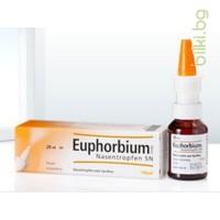 Еуфорбиум 20 мл. спрей, Euphoribium 20 ml, HEEL