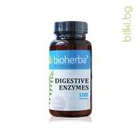 digestive enzymes, храносмилателни ензими, мазнини
