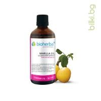 масло от марула, марула, sclerocarya birrea seed, oil
