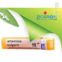 artemisia vulgaris, boiron