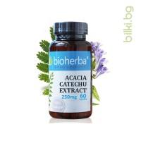 АКАЦИЯ КАТЕХУ ЕКСТРАКТ, КАПСУЛИ х 60, 250 мг, Биохерба Р