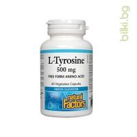 л-тирозин, допамин, норепинефрин, хормони
