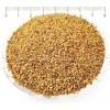 люцерна билка, Medicago sativa, люцерна семена цена, люцерна семена приложение