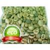 зелено кафе на зърна, Coffea robusta, зелено кафе действие