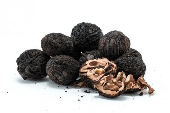 черен орех в българия, черен орех, черен орех билки