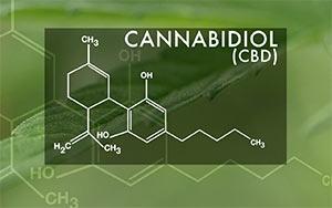 канабидиол, cbd, коноп, масло, канабис