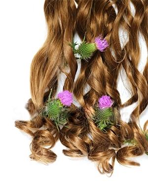 красота, коса, корен от репей