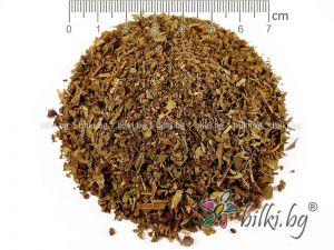 босилек лист билка
