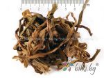 кринум, дива лилия билка